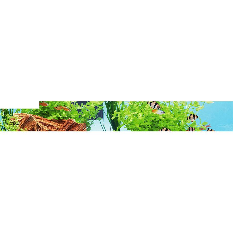 Купить по спецпредложению товары для аквариума