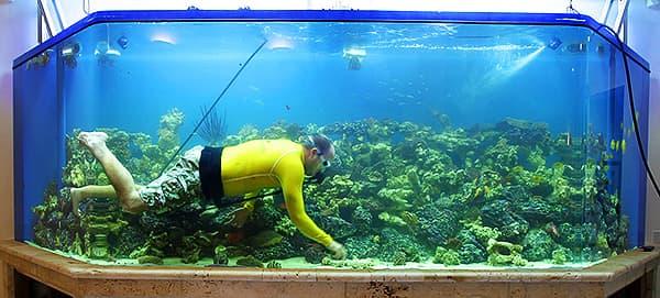 Бережный уход за аквариумом