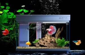 Правильное устройство аквариума