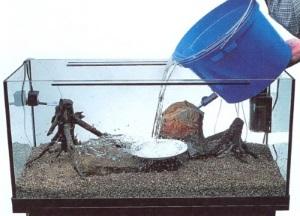 Как налить воду в аквариум