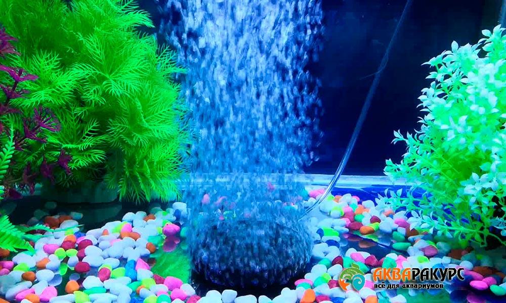 Аэрация и фильтрация аквариума