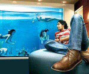 купить-аквариум