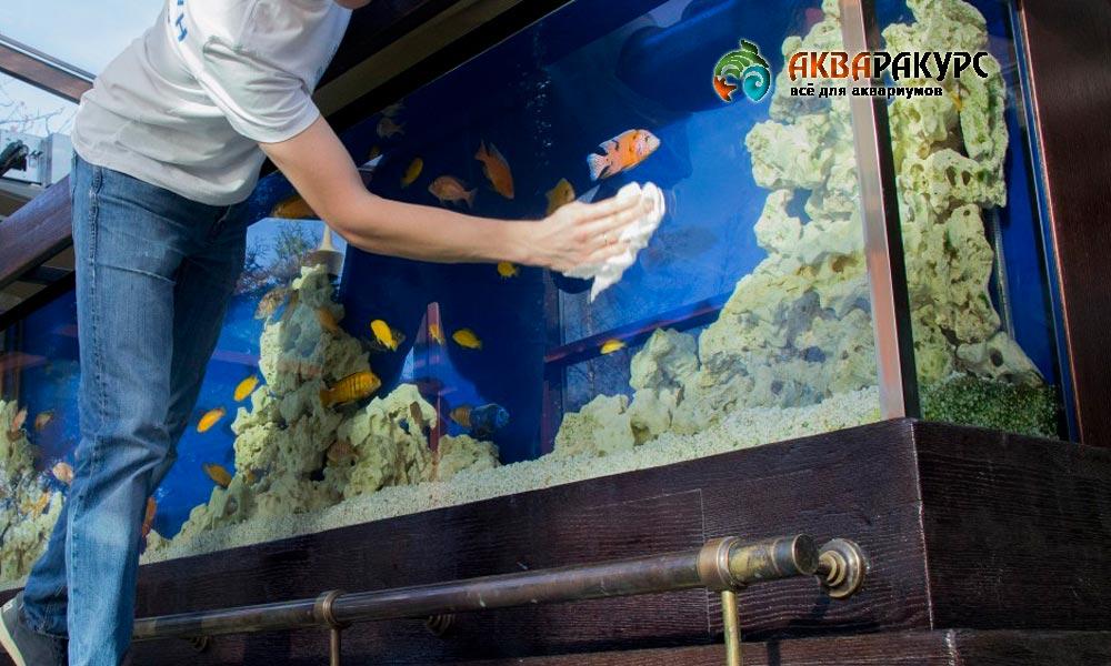 Рекомендации и советы по обслуживанию аквариума