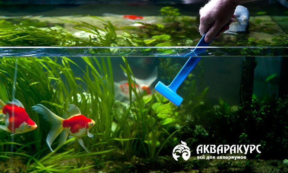 Инструкция по уходу за аквариумами